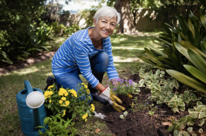 Container Gardening Activity For Seniors